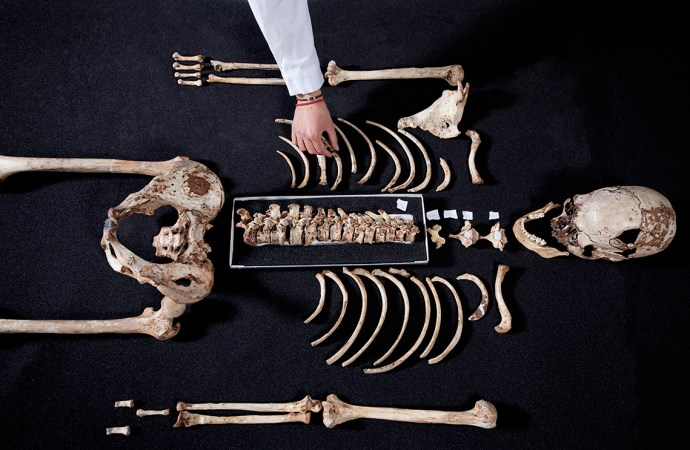 cheddar_man_c_trustees_of_the_natural_history_museum_london_2018