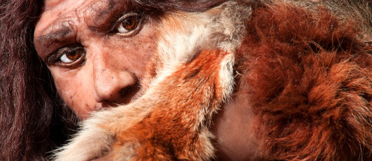 Neanderthals – not modern humans – were responsible for the world's oldest cave art, according to researchers