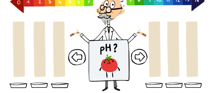 Google Doodle games: Test your pH scale knowledge with this interactive Doodle about S.P.L Sørensen