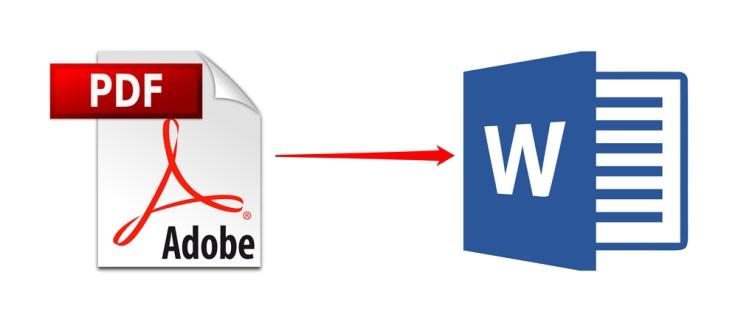 Как скопировать таблицу из PDF в Word