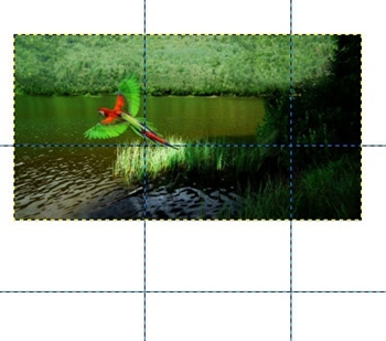 gimp how to make a photo collage