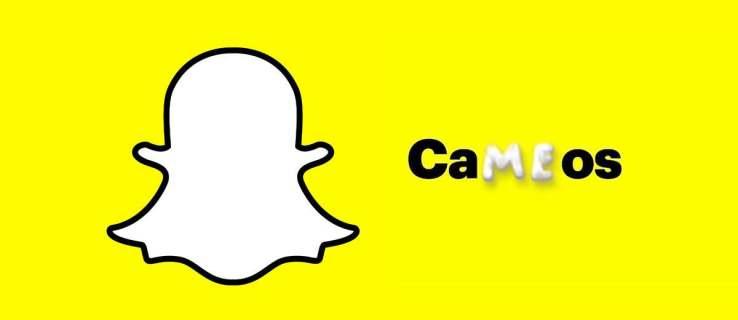 Snapchat Cameos Not Showing Up