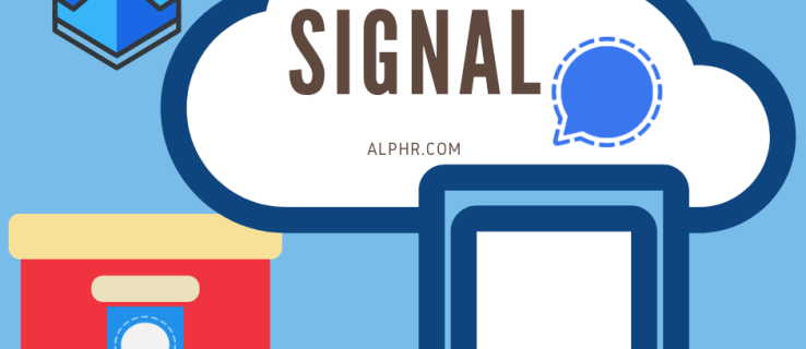 Signal Messaging - Where Are the Messages Stored?
