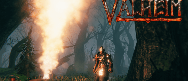 How To Find the Swamp in Valheim