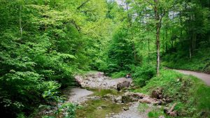 Der Weg durch die Glasenbachklamm ist leicht begehbar und kann auch mit dem Rad befahren werden.