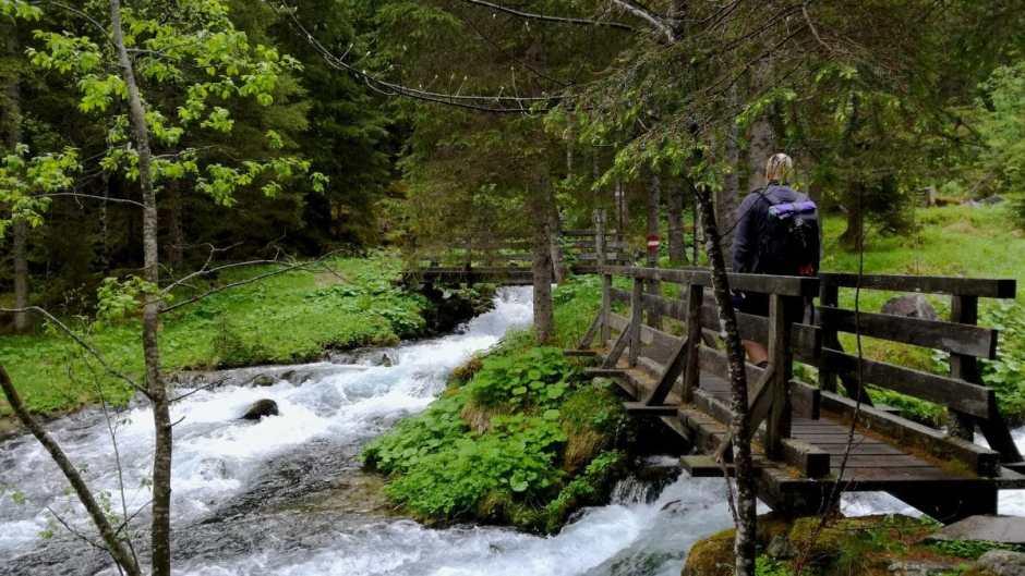 Der Aufstieg zum Schödersee geht immer am rauschenden Wildbach entlang.