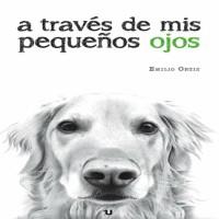 Entrevista a Emilio Ortiz, escritor y autor de