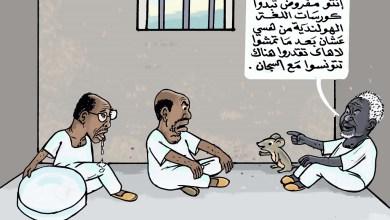 يوميات المساجين .. اللغة الهولندية.. كاريكاتير عمر دفع الله