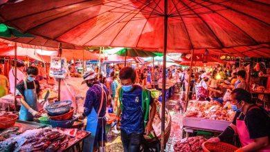 """بعض الأسواق """"الرطبة"""" يبيع لحوم حيوانات برية غريبة، مثل الأفاعي والثعالب"""
