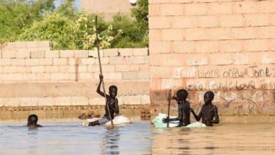 وصل منسوب نهر النيل في السودان هذا العام إلى أعلى مستوى له في الذاكرة الحية