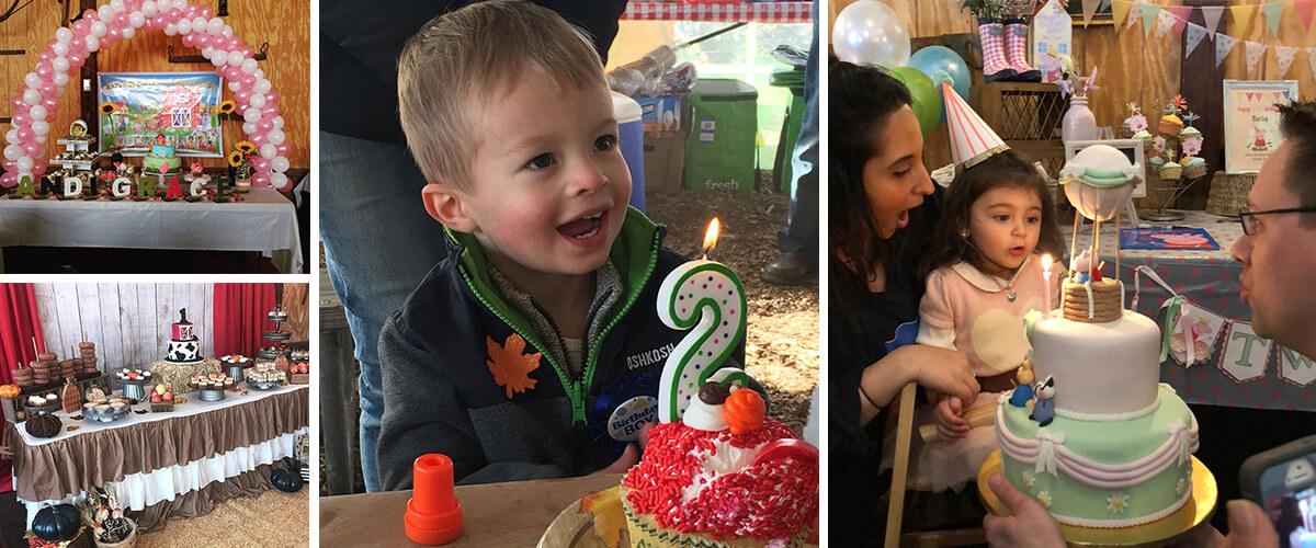 Kids Birthday Party Alstede Farms Nj