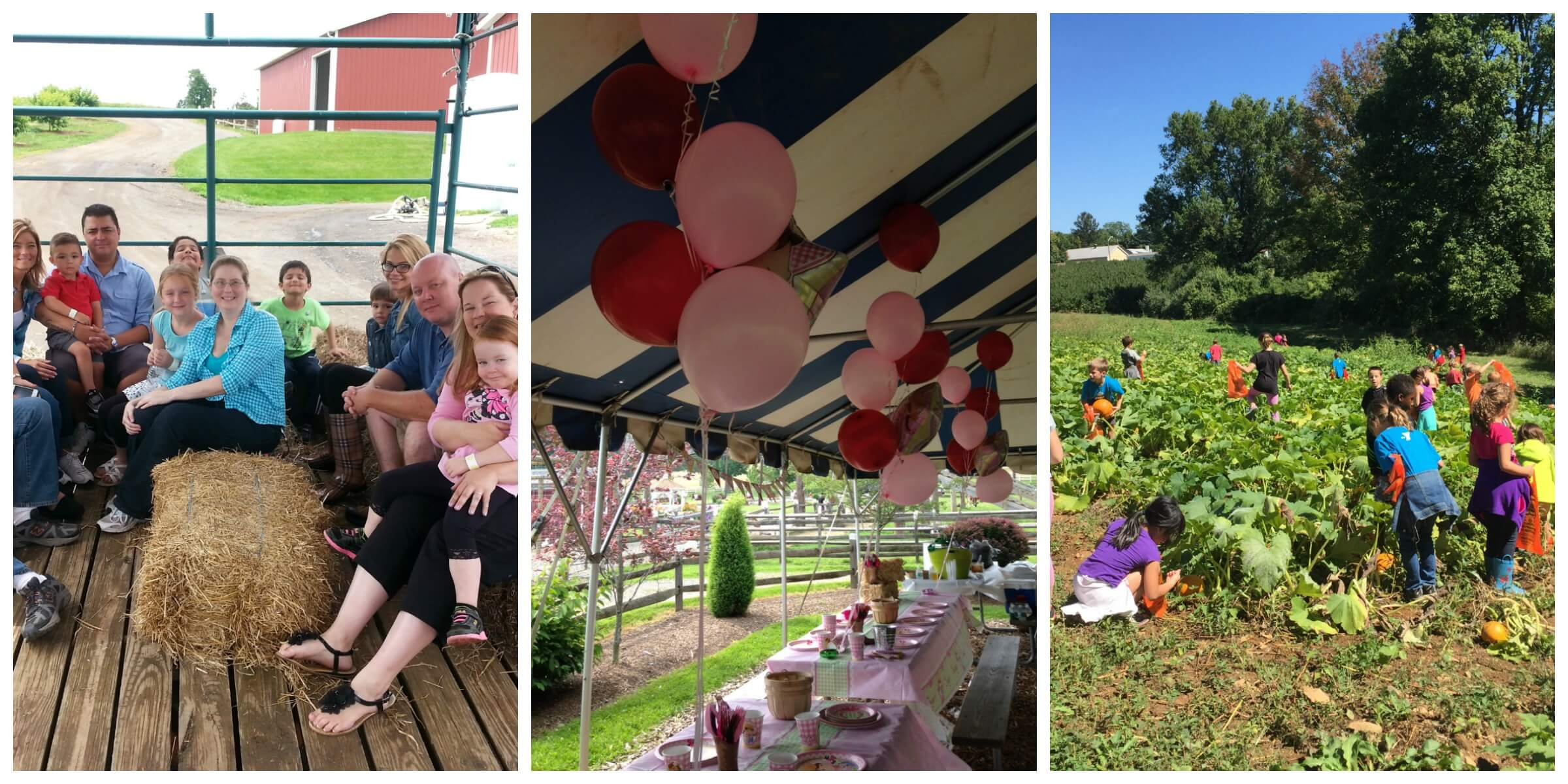 Party Packages Alstede Farms Nj