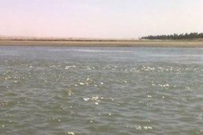 غرق  24 تلميذا بشمال السودان