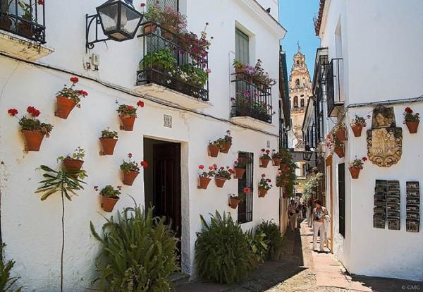 calleja_de_las_flores