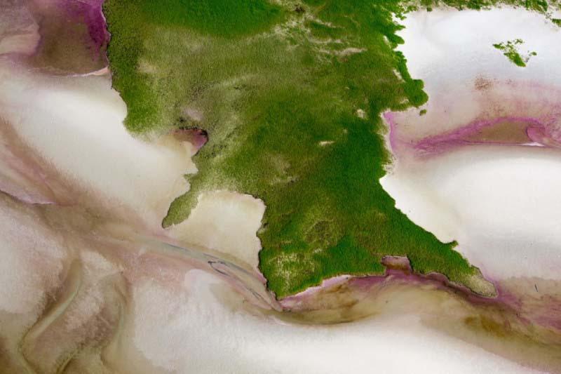 11. Correntes de água de cor magenta, em Wellfleet (EUA)