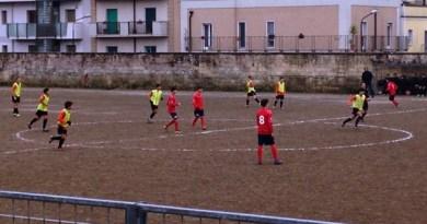 Pellegrino Sport - Area Virtus Ludi