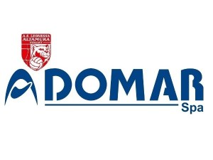 Domar-Leonessa