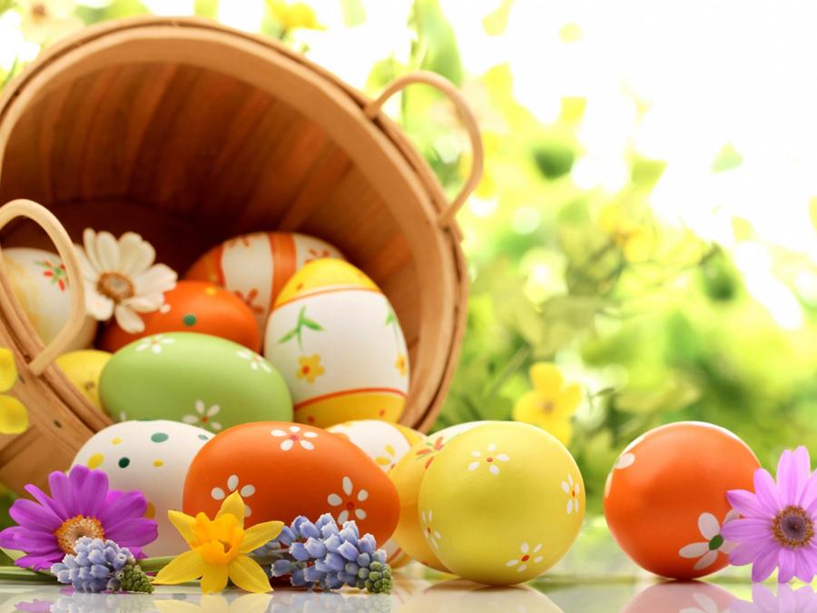 Populaire Buona Pasqua 2016 da altamurasport.it | Altamurasport YG28