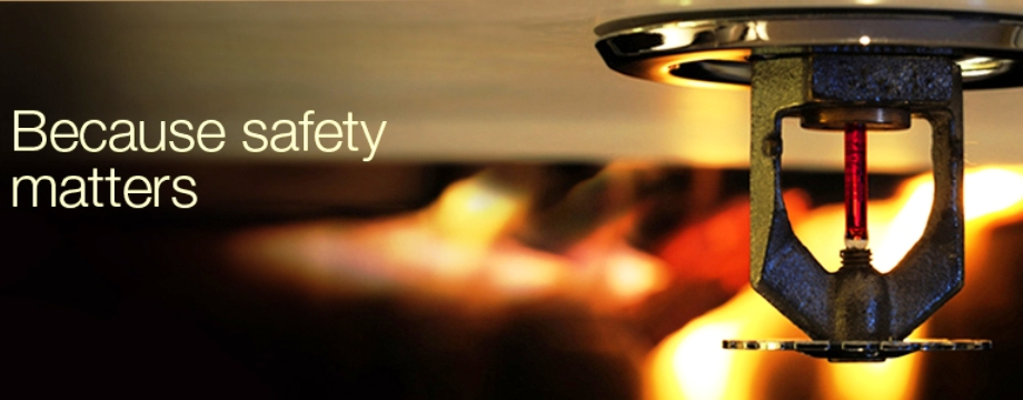 Leading Security Systems