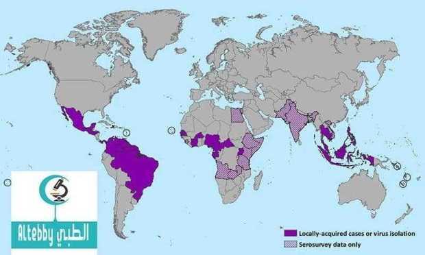 منظمة الصحة العالمية تحزر من انتشار فيروس يحتمل انه يتلف أدمغة الأجنة أدوية