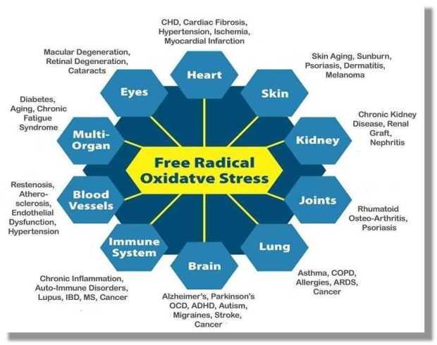 الاجهاد التأكسدي Oxidative stress