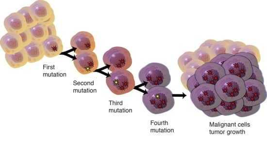 المورثات المحبطة للنمو Tumor Supressor Gene