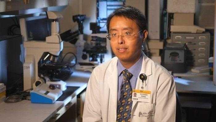 دراسة جديدة تُظهر فائدة مستخلصات التوت في علاج سرطان عنق الرحم