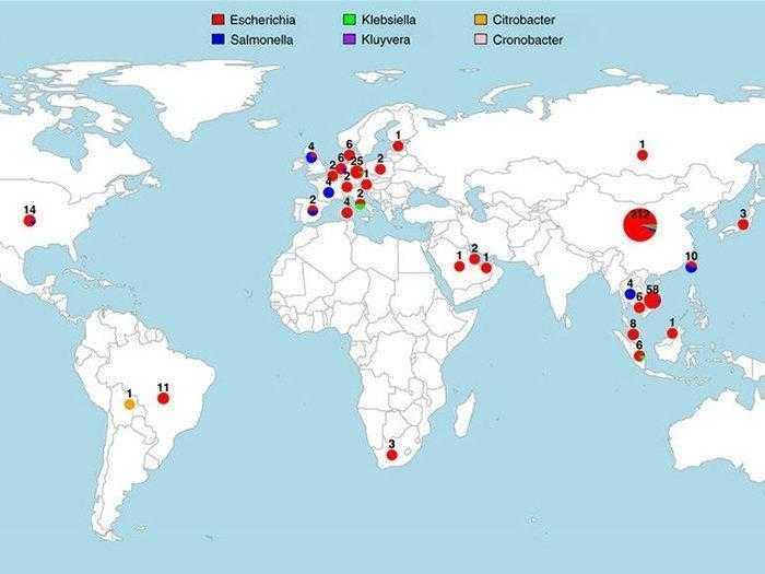 دراسة تحذر من انتشار الجين المقاوم للمضادات الحيوية في جميع أنحاء العالم