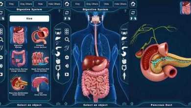برنامج التركيب التشريحي للجهاز الهضمي