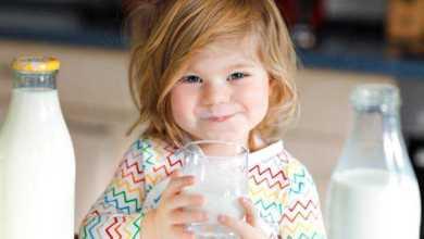 الحليب كامل الدسم