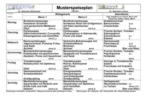 thumbnail of F 2.3.2.1 Speiseplan-Musterplan