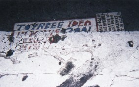 NYC Toynbee on Broadway and 33rd