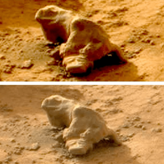The Iguana rock found on Mars