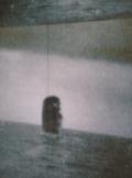 Submarine USS Trepang UFO photo - UFO entering or crashing into the ocean