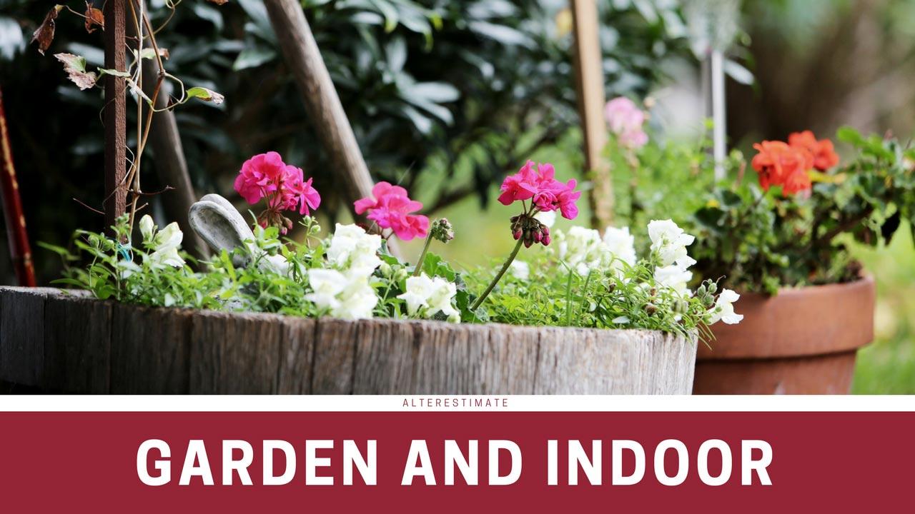 https://i2.wp.com/www.alterestimate.com/wp-content/uploads/2017/09/category-garden-indoor.jpg?ssl=1