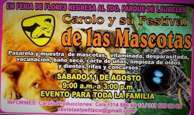 Festival Carolo