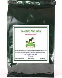 sea kelp for horses
