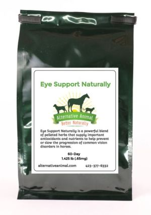 uveitis treatment for horses