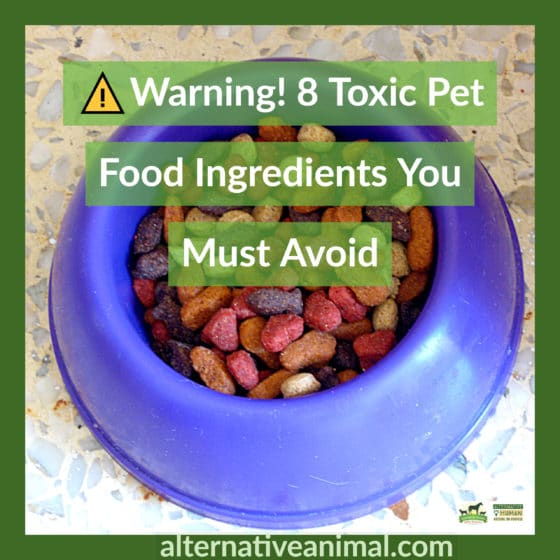 toxic pet food ingredients
