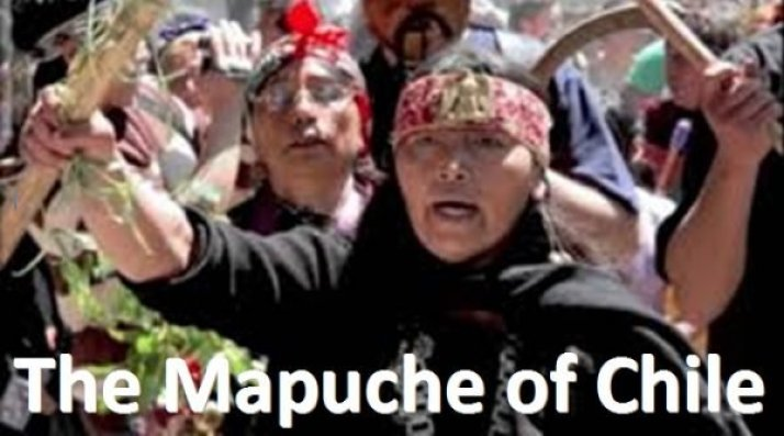 FILM: The Mapuche of Chile