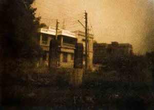 Cyanotype in camera