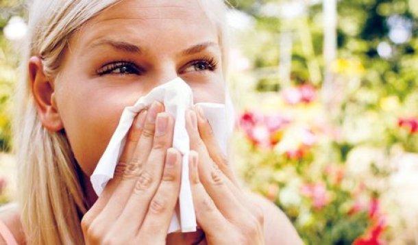 alergie 2