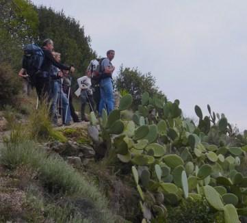 Mont Bastide 120304 Altiplus (3)