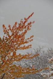 2012-10-28-St_Etienne_de_Tinee-Altiplus-IMG_0804