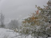 2012-10-28-St_Etienne_de_Tinee-Altiplus-Photos_Nadine-05
