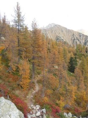 Mont archas