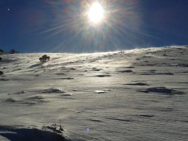 Montagne de Thiey2849