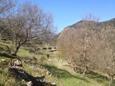 2015-04-12-Altiplus-Le_Reveston-Photos_Chantal-12