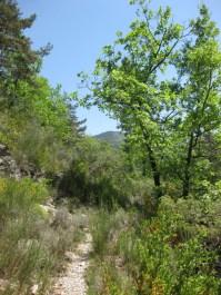 2015-05-10-Altiplus-Rocher_des_Baous-IMG_3882