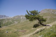 2015-07-19-Altiplus-Plan_Tendasque-IMG_0207
